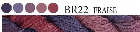 BR21 FRAISE