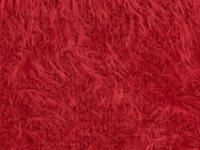 Minky Plush Red